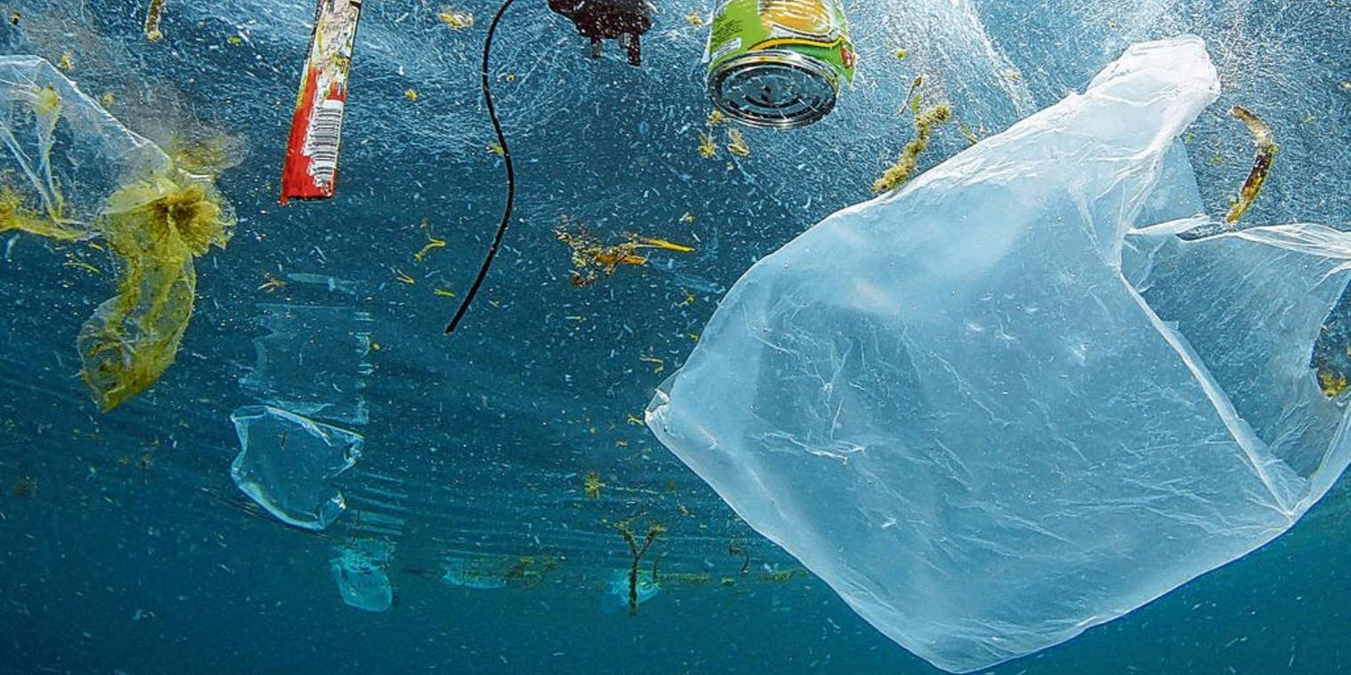 Add your name: Ban single-use plastic bags in Maine