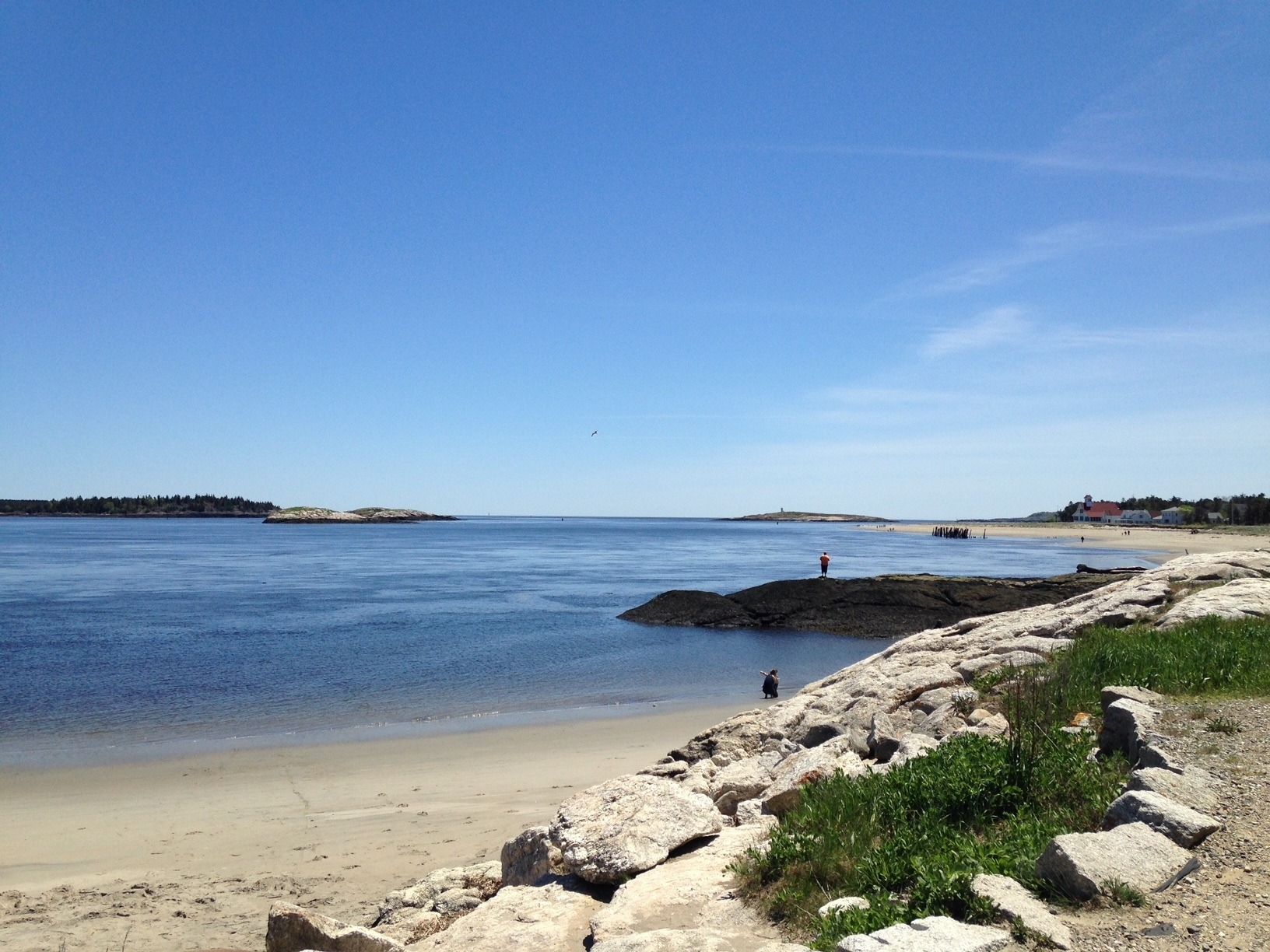 "Say ""NO"" to offshore drilling off Maine's coast"
